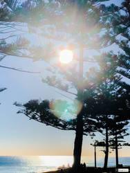 Evening sunshine 14/07/2019 by Saraeustace91