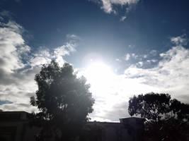Sunshine 27/5/2020