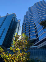 Perth city view no4 3/6/2021