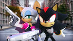 Rouge and Shadow