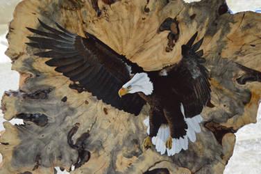 Freedom by Rhed-Dawg