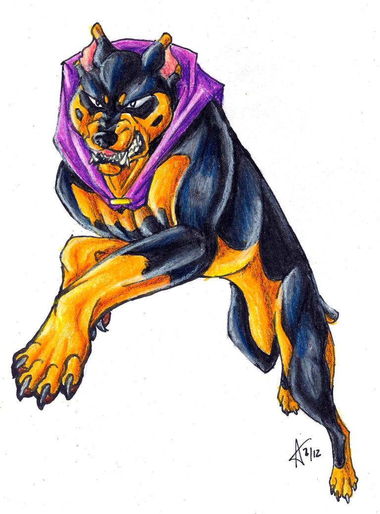 Doberman Attack Dog For Sale