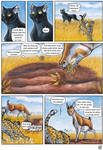 Africa -Page 6