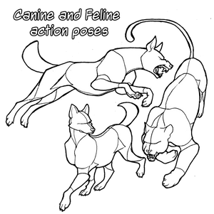 Pose Reference: Canine and Feline Actions + DLC