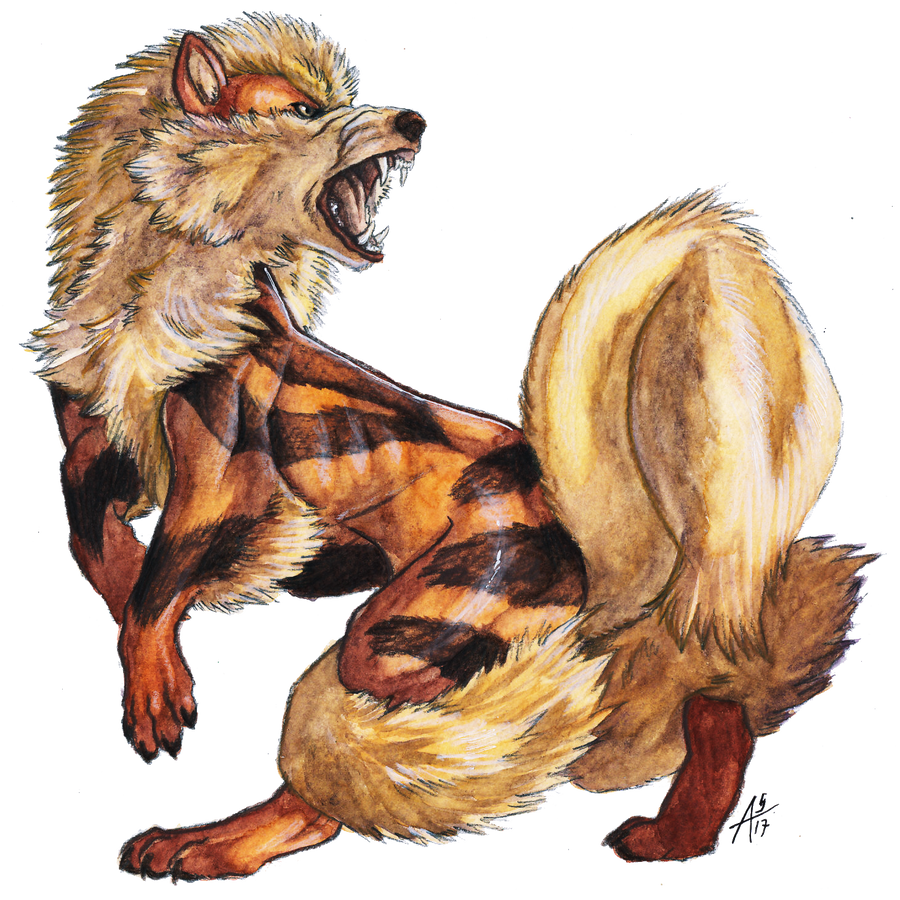Gotta draw 39 em all 059 arcanine with video by arven92 - Arcanine pics ...