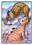 ACEO - Snowcats [PATREON]