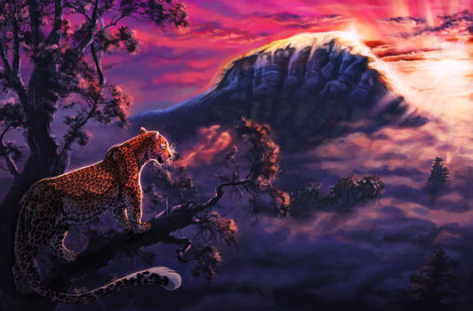Sunrise [COMMISSION]