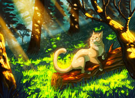 Patch of Sun [COMMISSION] by ARVEN92