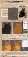 Patreon Tutorial: How To Draw Tortoiseshell Fur