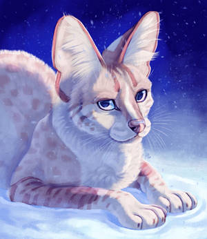 Snowcat [PATREON REWARD]