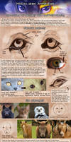 Patreon Tutorial: How To Draw Animal Eyes