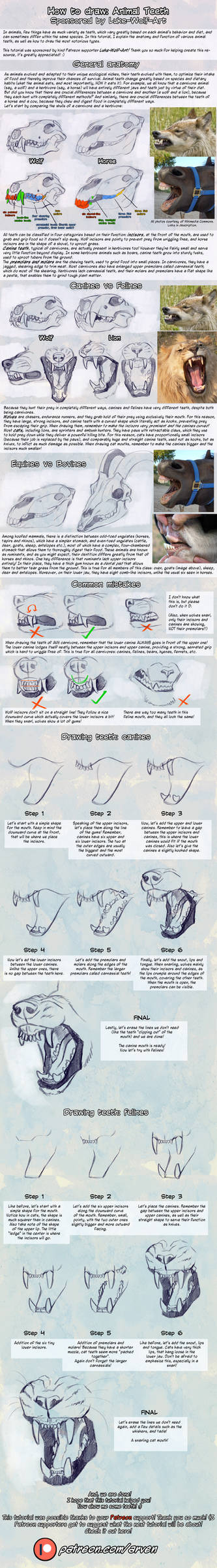 Patreon Tutorial: How To Draw Teeth
