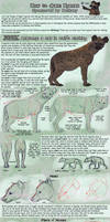 Patreon Tutorial: How To Draw Hyenas