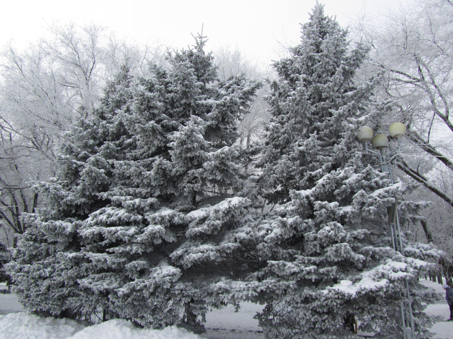 Winter farytale 2 by GRafuk