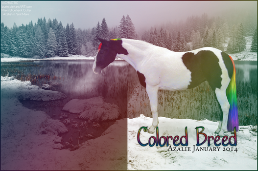 HP: Colored Breed Club 01-14