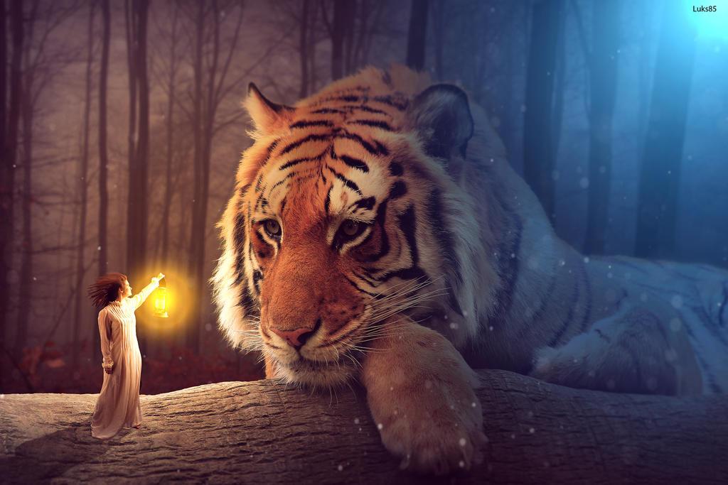 Big cat by Luks85