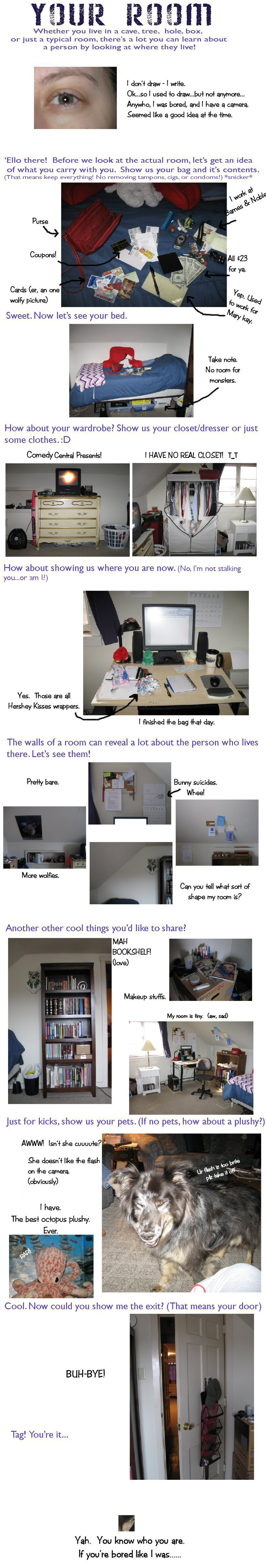 Room Meme by AlterEgox5