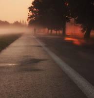Runner by TomaszPrzybylo