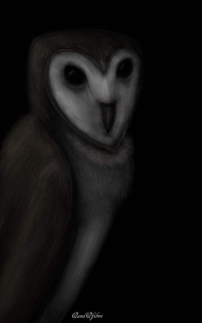Owl (Speed Painting) by QandQfilms