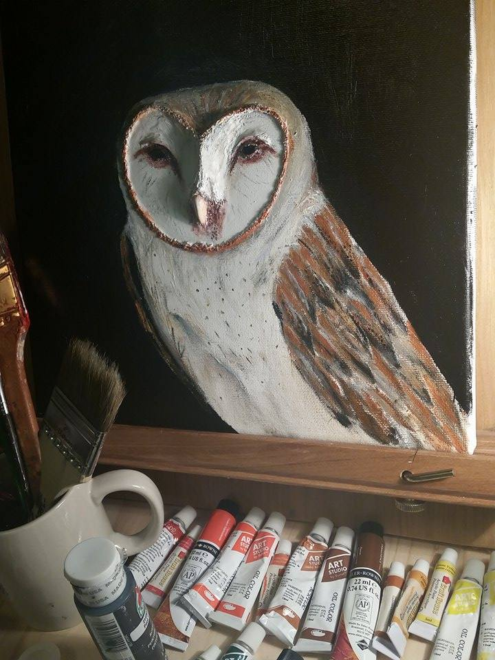 3D Owl Painting by QandQfilms
