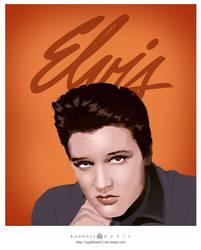 Elvis has left the building by ragdollou812