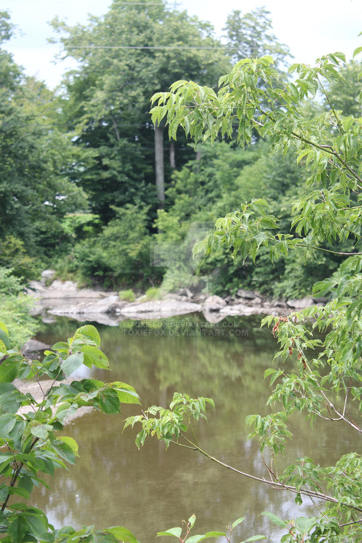 Downstream Montgomery VT by ToxieFox