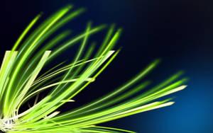 Green Light by hafele