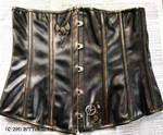 Hand Painted Steampunk Corset