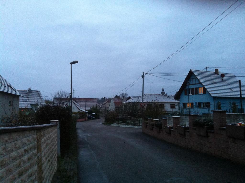 Mes quelques photos.  Icy_morning_by_ayumi_baka_neko-d6vyjm9