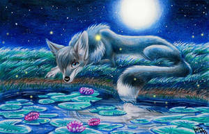 Star meadow by Deygira-Blood