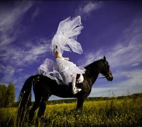 Horseman by photoport