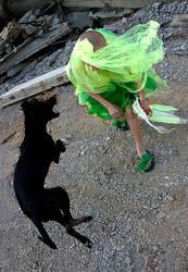 Dog - hole by photoport