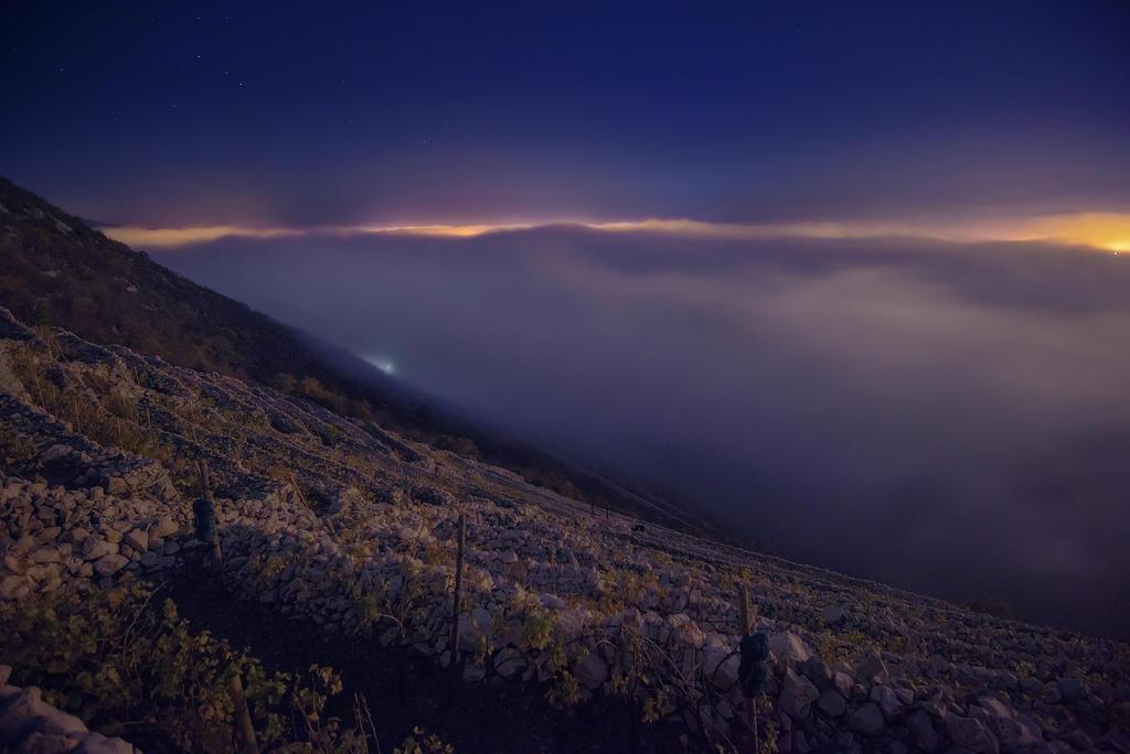 Beyond the Mist by marinsuslic