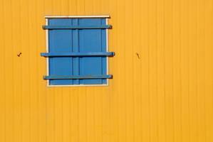 Window 005