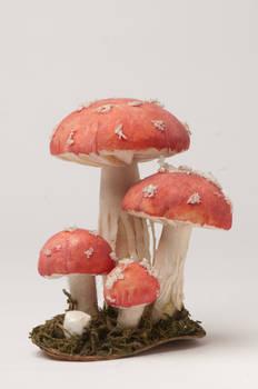 Mushroom fake 001
