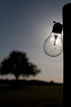 Light bulb 009