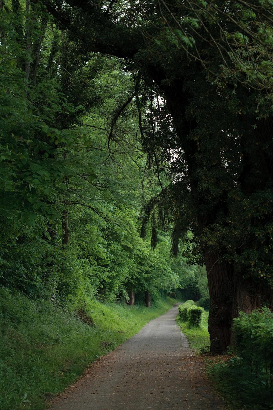 Road 015 by ISOStock