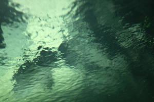Watertex 004