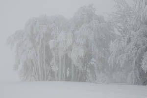 Winter 056 by ISOStock