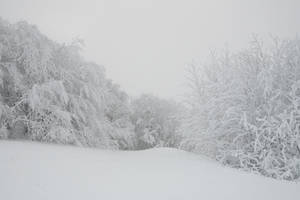 Winter 059 by ISOStock
