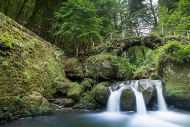 Waterfall bridge forest by ISOStock