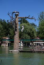 Europapark 039 tribal tree totem by ISOStock