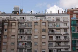 Barcelona backyard 001
