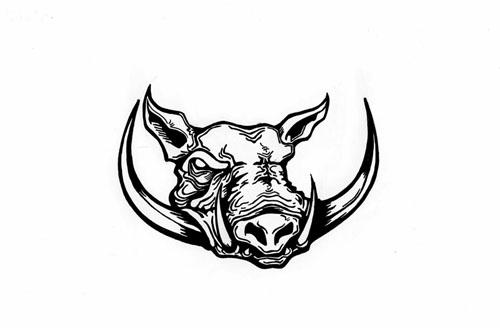 warthog | pigs | Pinterest