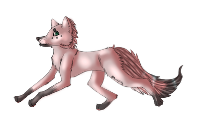 Bandit OC by MeWittykitty