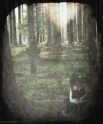 The Reader by leoberos