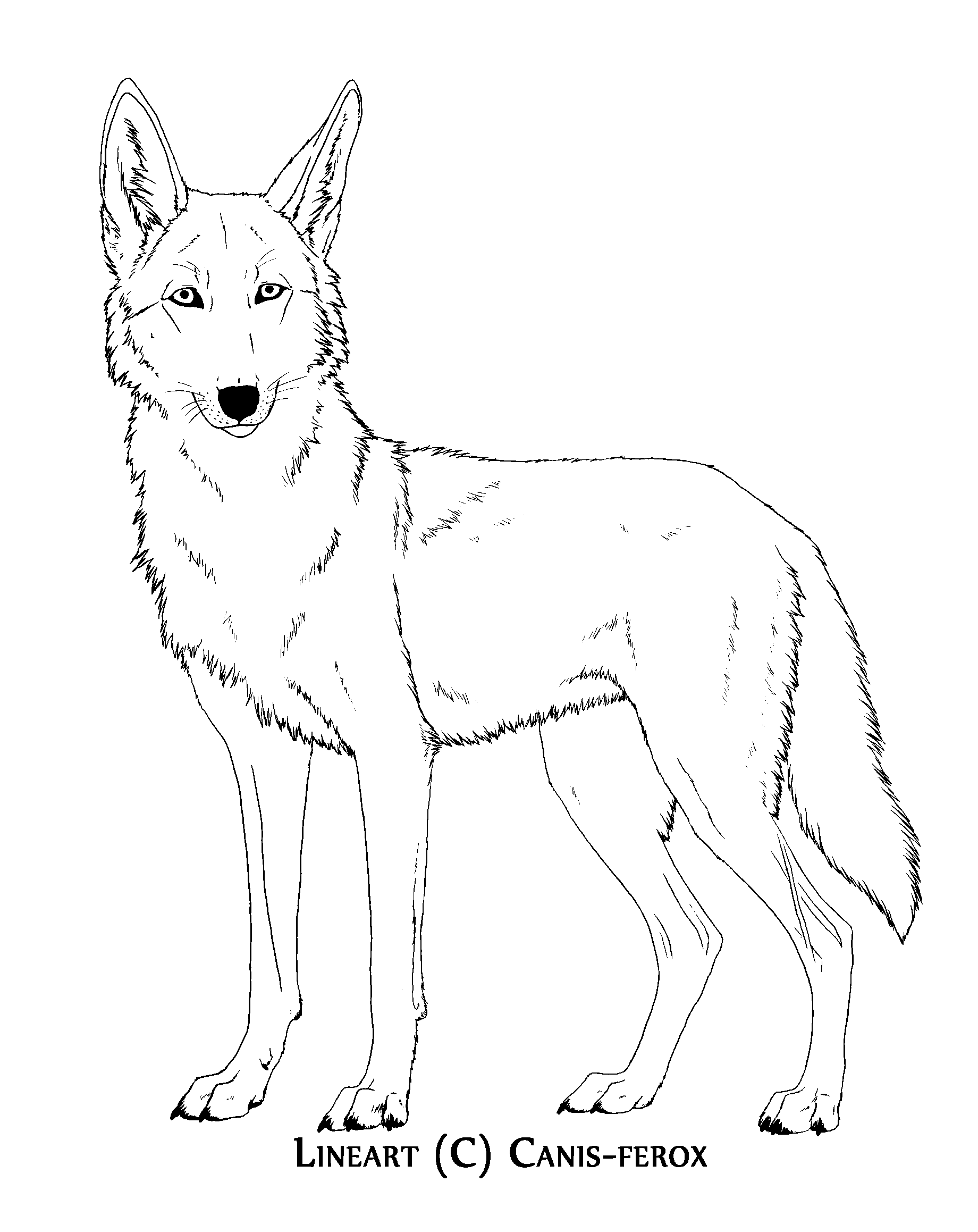 friendly wolf coloring pages - photo#44