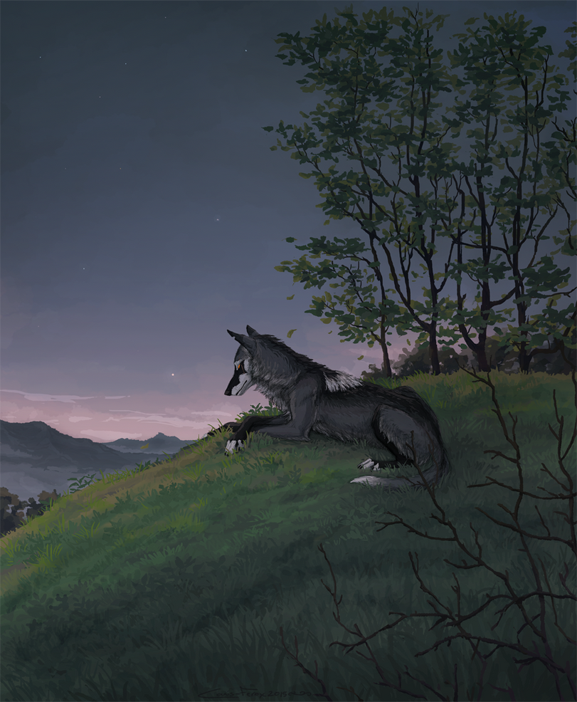 Over the Hills and Far Away by Canis-ferox