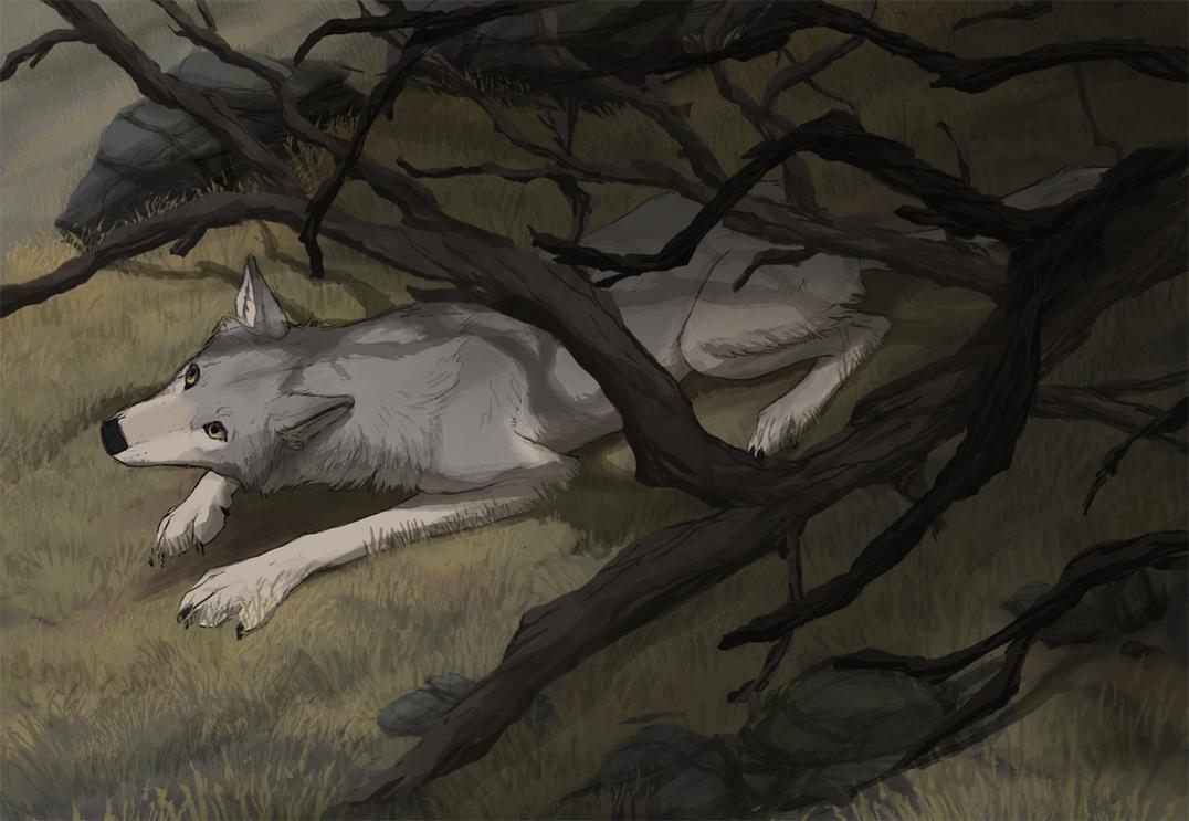 Lyr by Canis-ferox
