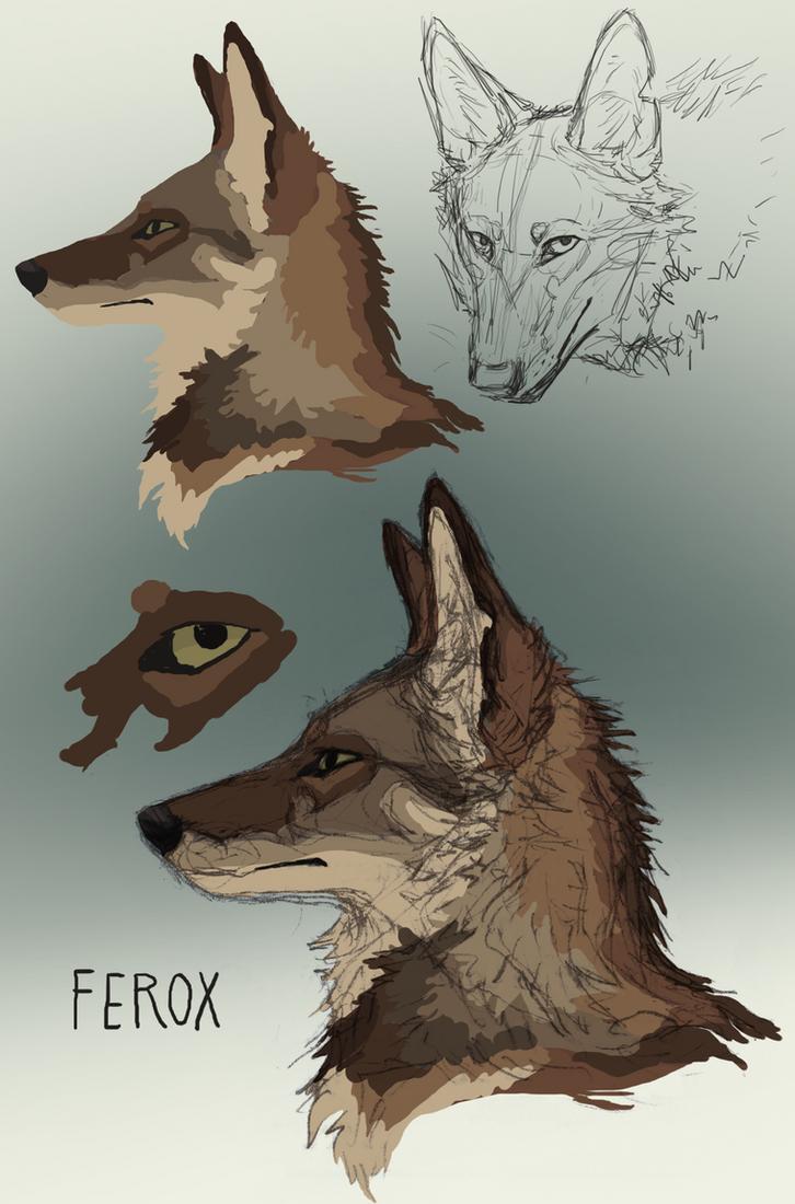 Ferox by Canis-ferox